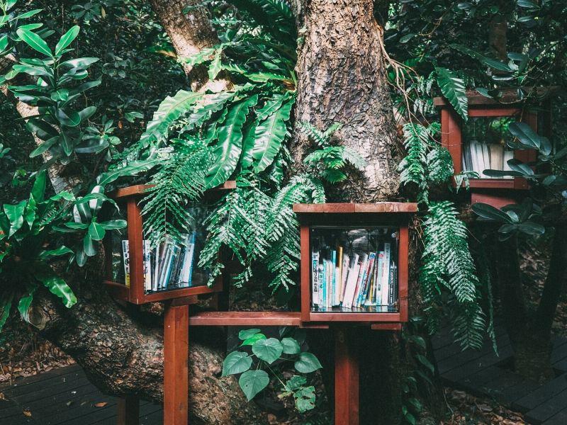 Bücher für Selbstwert, Gesundheit, Willenskraft und Selbstliebe